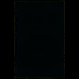 """MACKIE XR824 CASSA STUDIO MONITOR 8""""/1"""" BIAMPLIFICATO 160W XR-824"""
