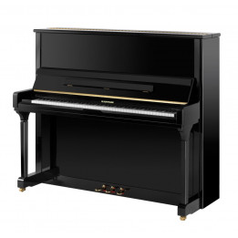 W. HOFFMANN MADE BY BECHSTEIN V-131 VISION PIANO PIANOFORTE VERTICALE ACUSTICO V131